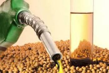 Óleo diesel passa a conter 11% de biodiesel