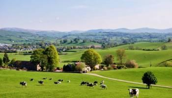 Declaração de propriedade rural