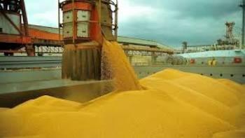 SOJA: Brasil passa a controlar mais de 50% da exportação