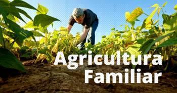 Câmara aprova ajuda a agricultores familiares e feirantes