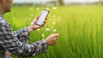Sancionadas leis da conectividade rural